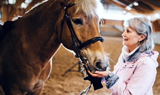 Hoitajana hevonen